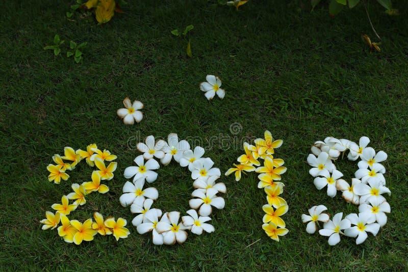 Cijfers van gele en witte bloemen op groen gras stock afbeeldingen