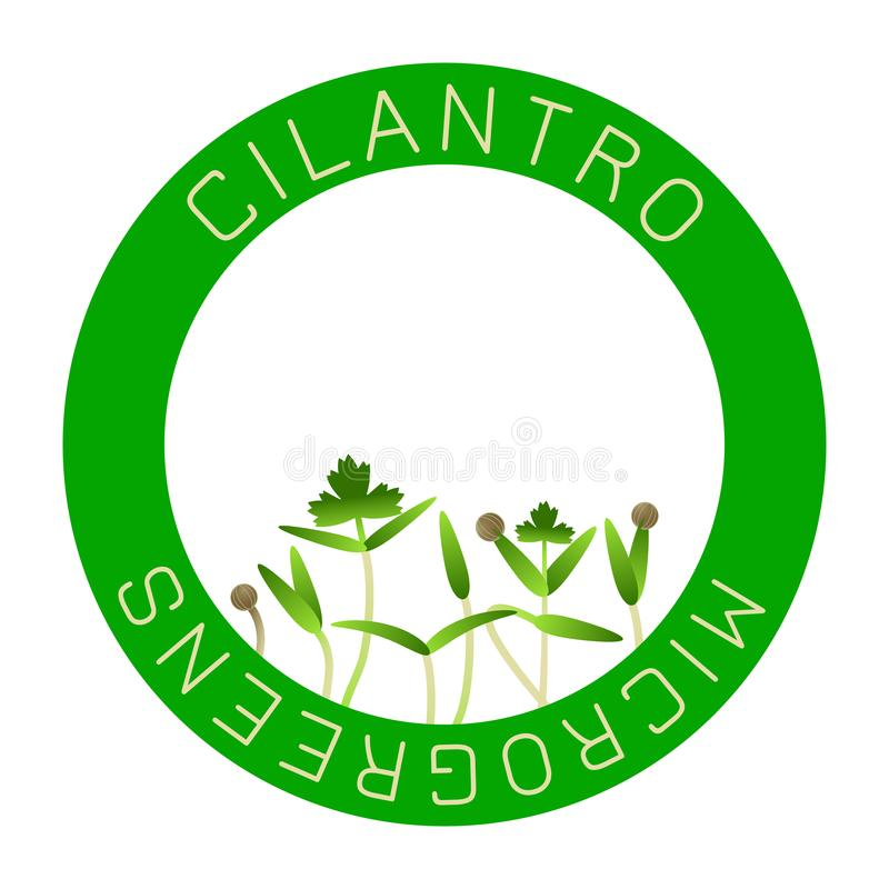 Cilantro de Microgreens Conception d'emballage de graine, élément rond au centre Graines de germination d'une usine illustration libre de droits