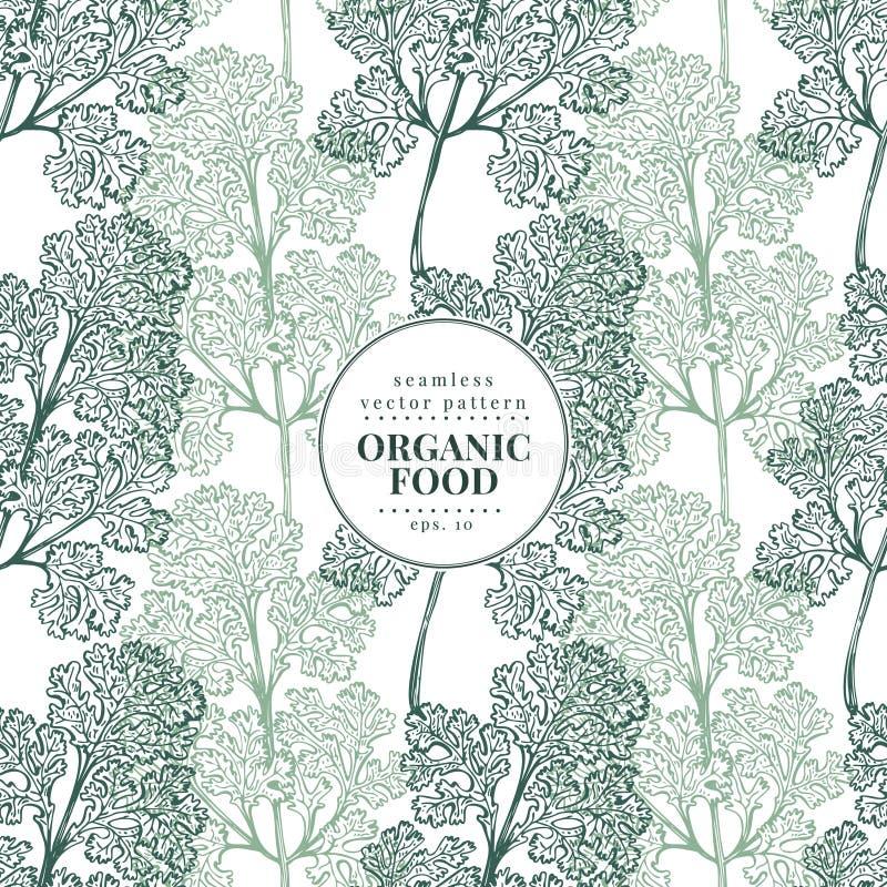 cilantro Vector naadloos patroon voor ontwerpmenu, verpakking en recepten Hand getrokken uitstekende illustratie botanisch stock illustratie