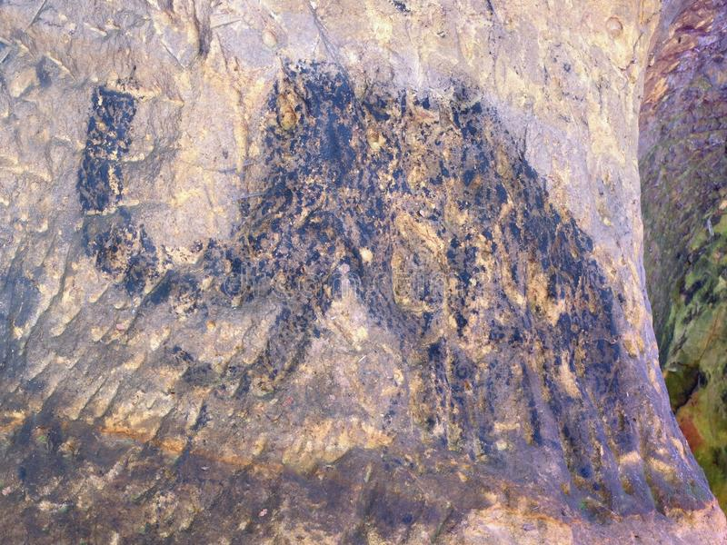 Cildren art in sandstone cave. Black carbon mammoth paint. Abstract children art in sandstone cave. Black carbon mammoth paint of human hunting on sandstone wall royalty free stock photography