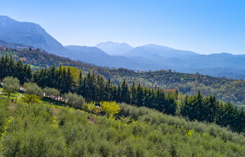 Cilento. Italy,Cilento, the countryside around Bellosguardo royalty free stock image