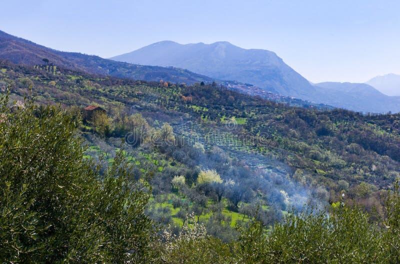 Cilento. Italy,Cilento, the countryside around Bellosguardo royalty free stock images