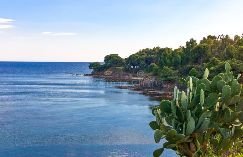 Cilento. Italy,Cilento, Ogliastro Marina, the seafront stock photos