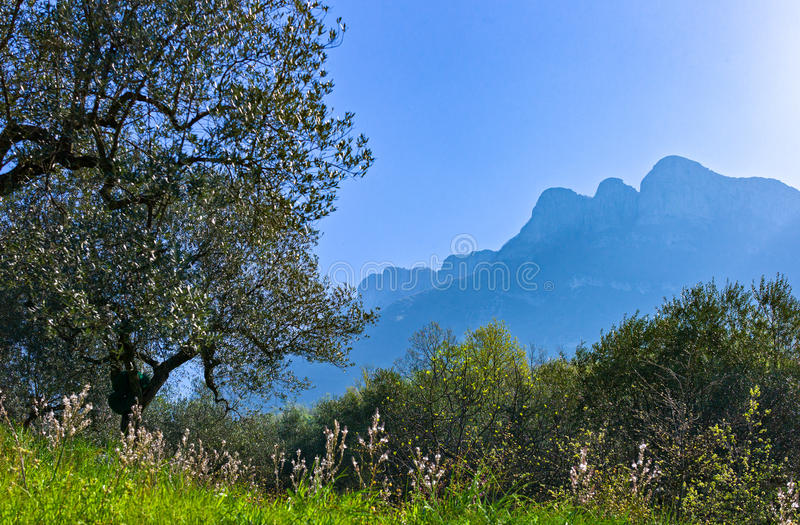 Cilento. Italy,Cilento, paesaggio dei monti Aburni nei pressi di Sicignano stock images