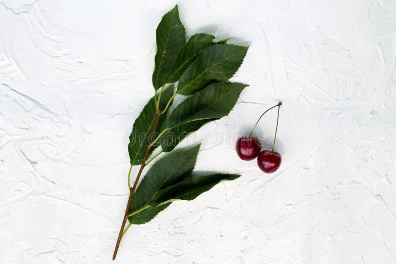 Ciliege fresche su un ramo con le foglie verdi su una vista superiore del fondo bianco fotografia stock libera da diritti