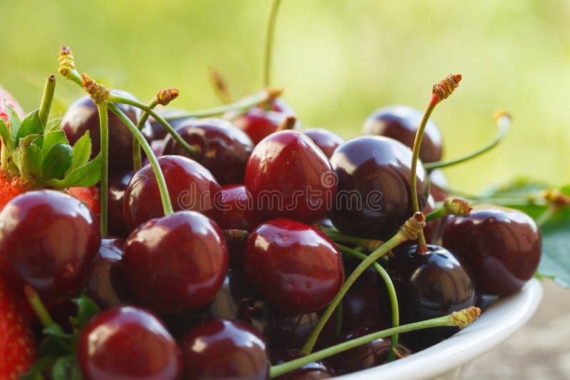 Ciliege mature rosse organiche pronte da mangiare fotografie stock libere da diritti
