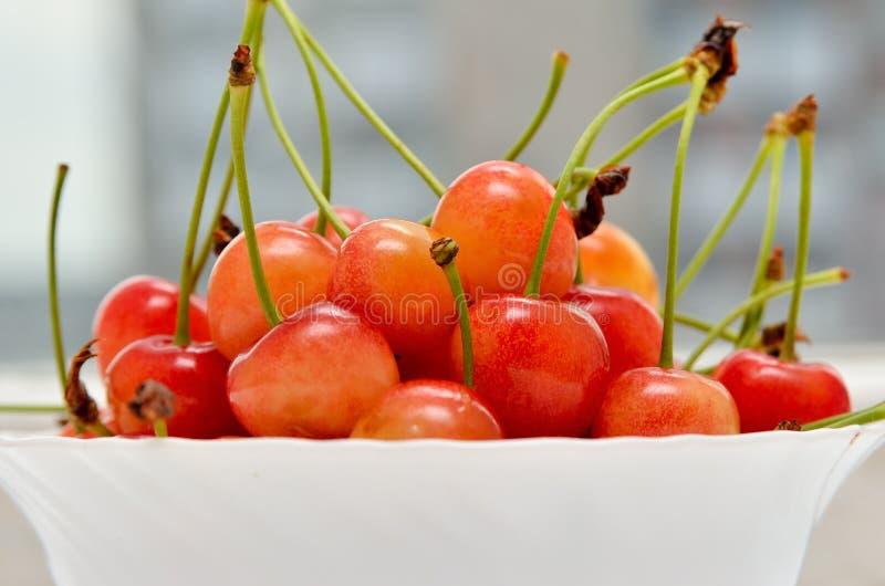 Ciliege mature in un piatto bianco su un fondo bianco Ciotola della porcellana riempita di frutta, natura morta immagine stock