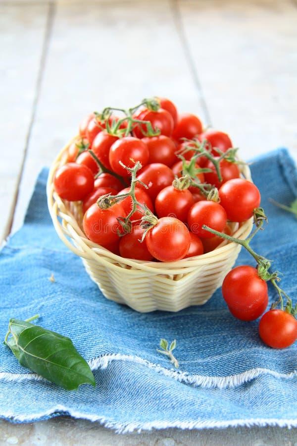 Ciliegia dei pomodori fotografia stock