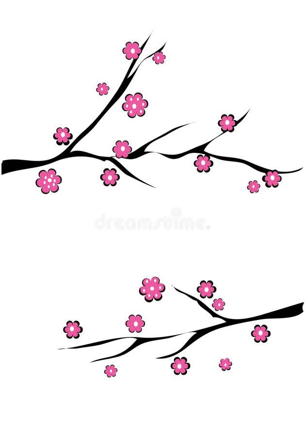 ciliegia del fiore illustrazione vettoriale