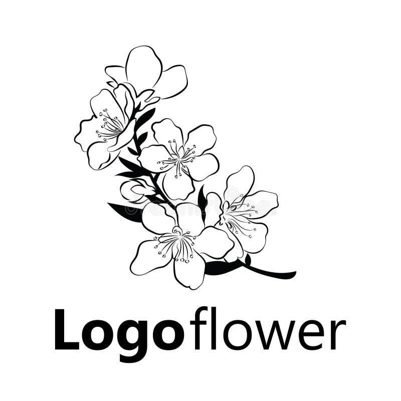 Ciliegia di fioritura Ramo di Sakura con i germogli di fiore Disegno in bianco e nero di un albero sbocciante in primavera Logo c royalty illustrazione gratis
