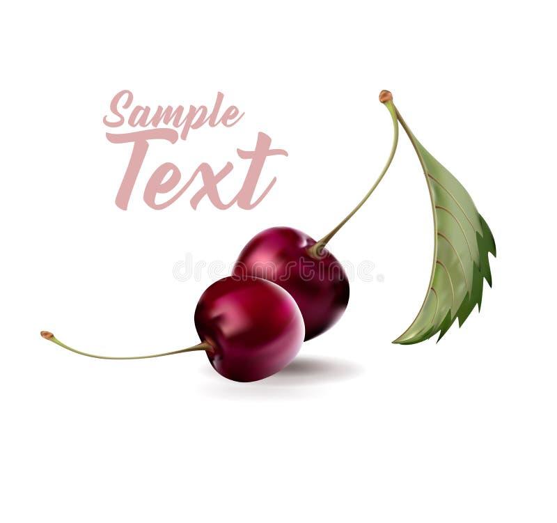 Ciliegia Frutta dolce Ciliege nella cartolina d'auguri di amore illustrazione vettoriale