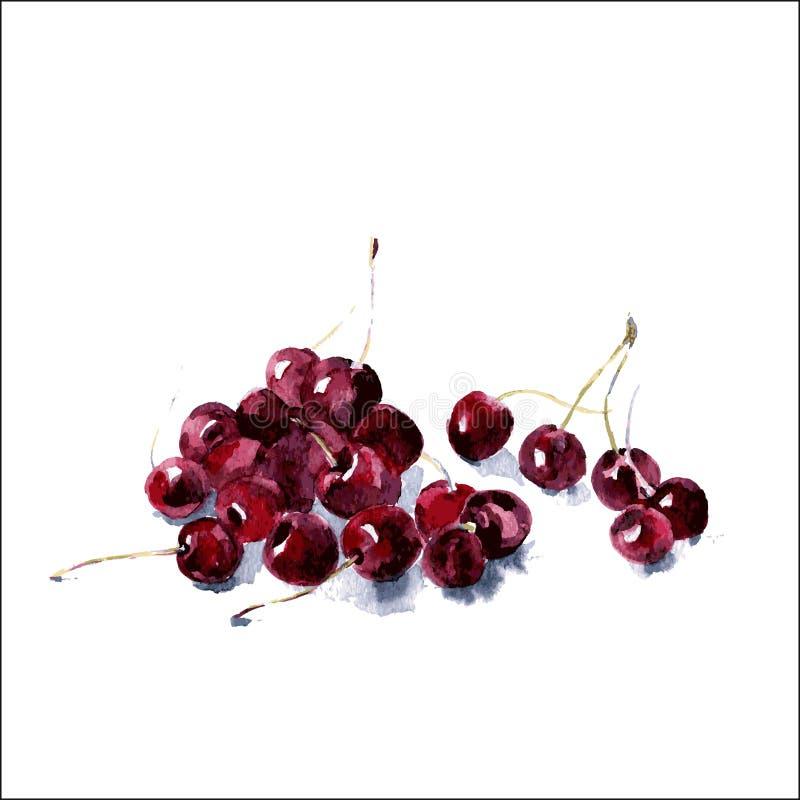 Ciliegia Illustrazione dell'alimento dell'acquerello fotografia stock libera da diritti