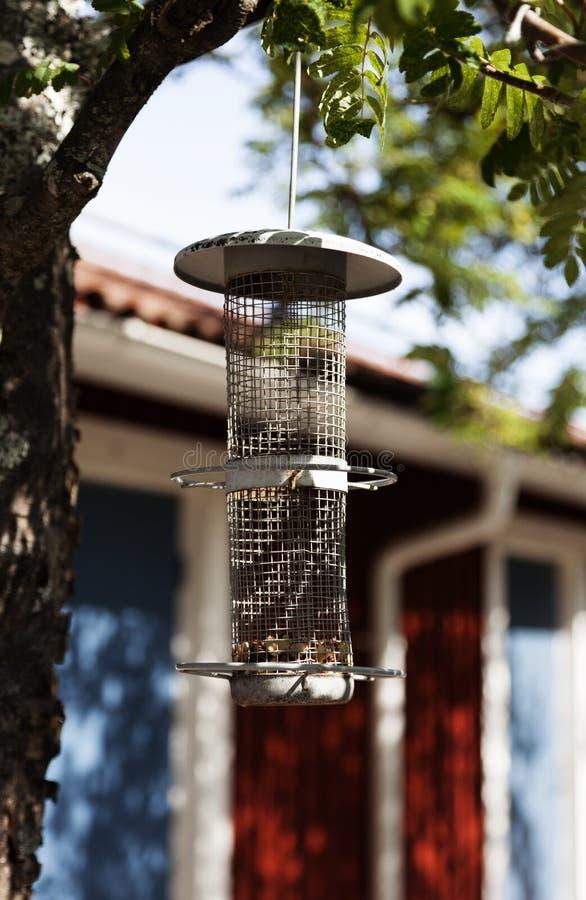 Cilindro que cuelga en los árboles que se utilizan para alimentar pájaros imagenes de archivo