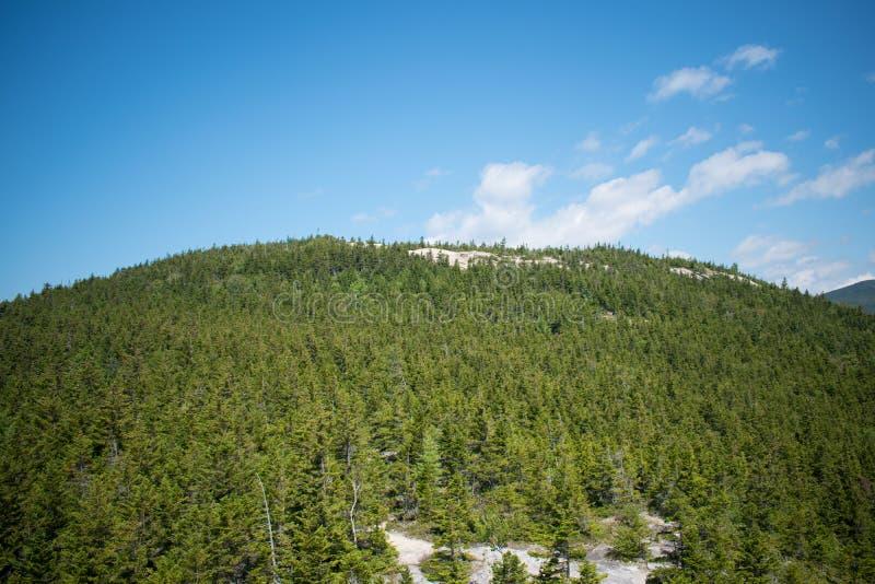 In cima alla montagna immagini stock libere da diritti