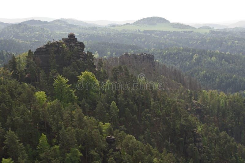 Cima della montagna con i grandi alberi fotografia stock