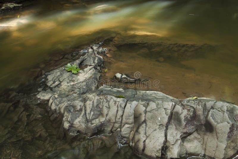 Cima delle rocce in acqua bassa fotografia stock libera da diritti