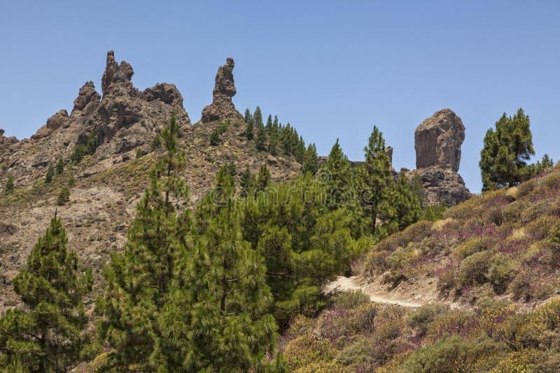 Cimeira de Roque Nublo, canário grande fotografia de stock royalty free