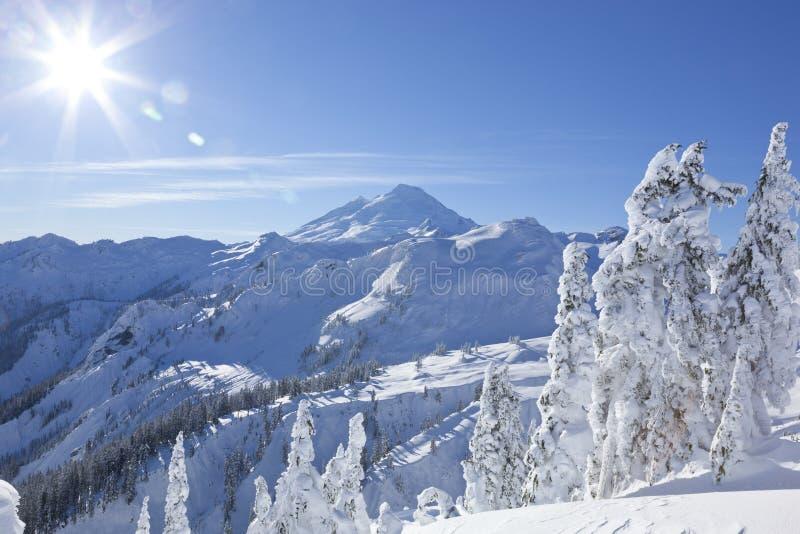 Cimeira do pico de montanha do padeiro da montagem, cena norte da natureza do inverno do parque nacional das cascatas fotos de stock royalty free
