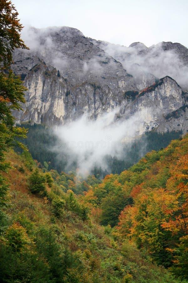 Cimeira que levanta-se acima da névoa fotos de stock