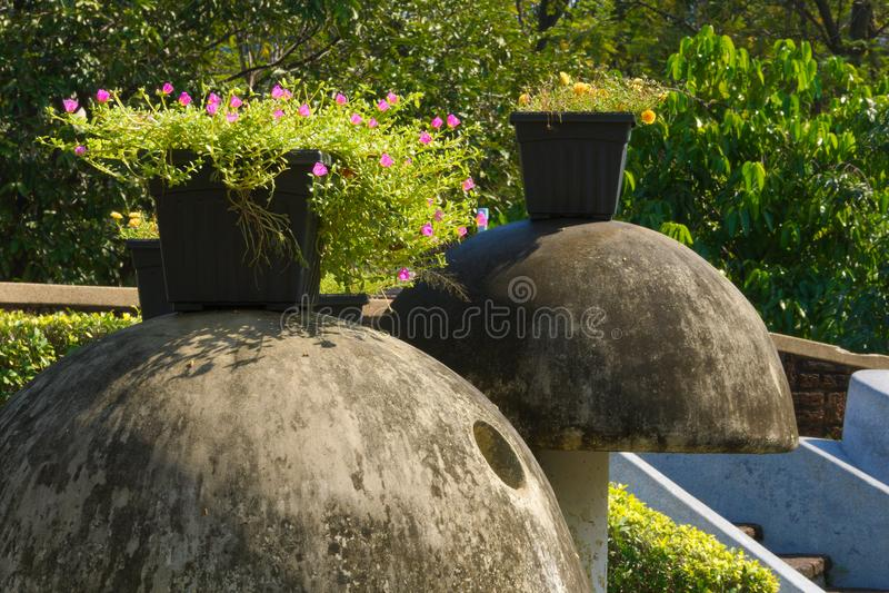 Cimentez les champignons en beau parc thaïlandais de jardin, avec les usines florales mises en pot sur le dessus photos libres de droits