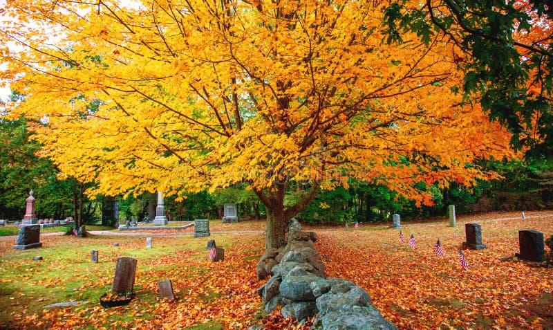 Cimetière et feuilles colorées en automne photos libres de droits