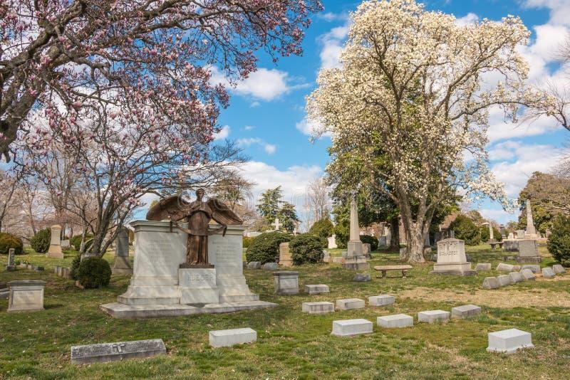 Cimetière Richmond Virginia Spring de Hollywood images libres de droits
