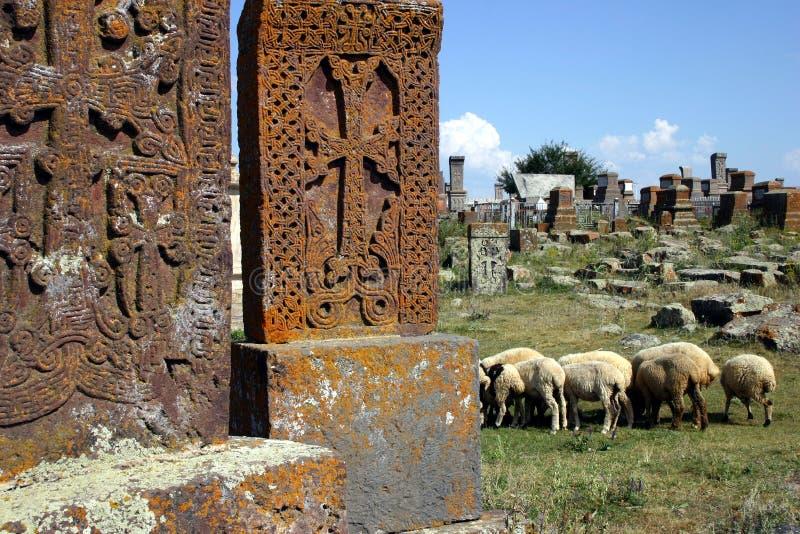 Cimitero arminiano con le pecore immagini stock libere da diritti