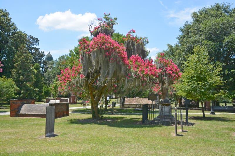 Cimitero coloniale del parco fotografia stock