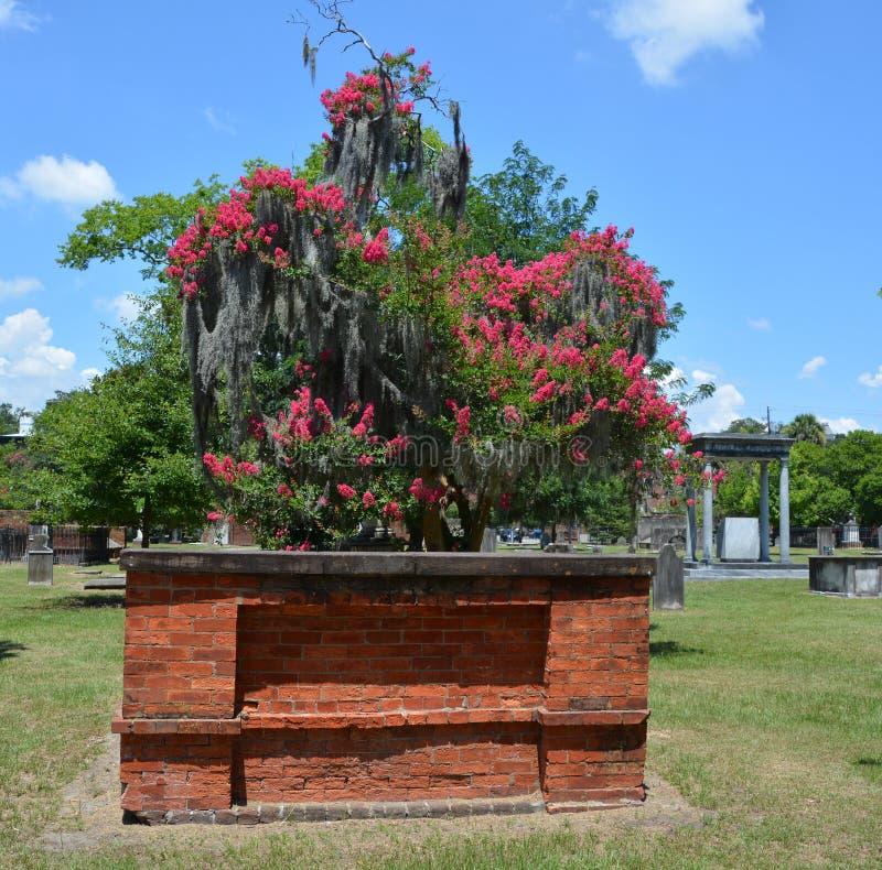 Cimitero coloniale del parco fotografie stock