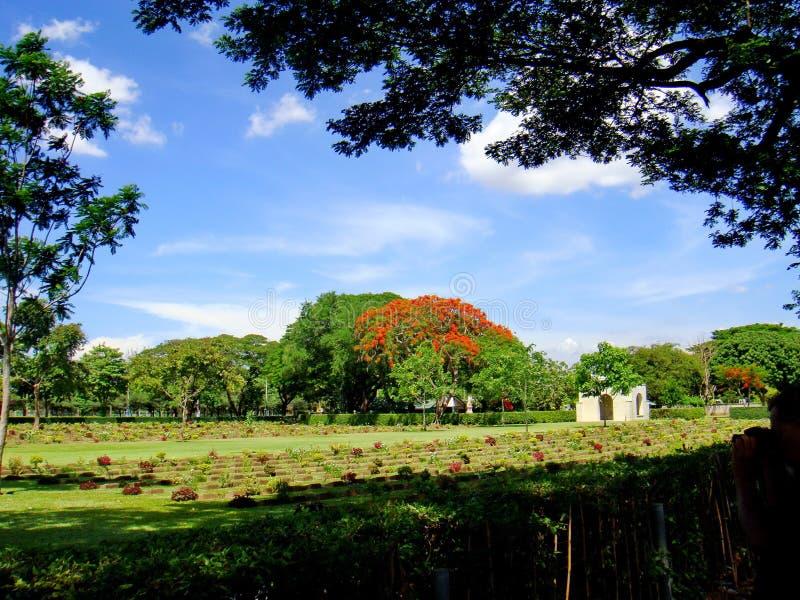 Cimitero di guerra di Kanchanaburi fotografie stock libere da diritti