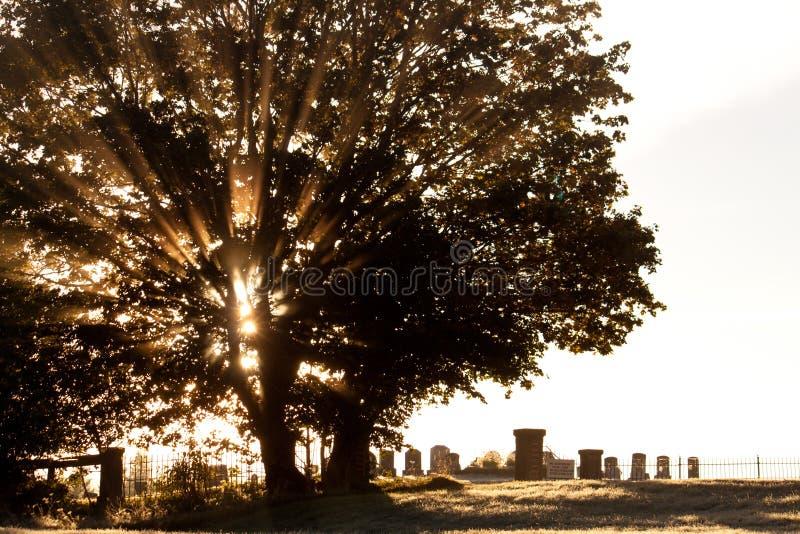 Cimitero sereno ad alba fotografie stock libere da diritti