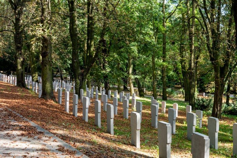Cimitero in una foresta di Poznan, Polonia con tombe bianche per ricordare le vittime della guerra immagini stock