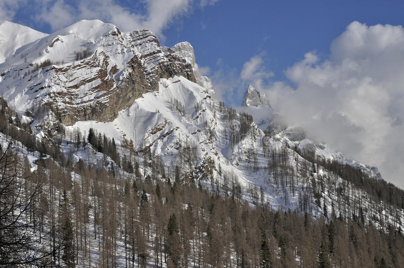 Cimon della pala detail, dolomites. Detail of dolomite mountain with cliffs and snowy slopes, shot in bright winter light stock photography