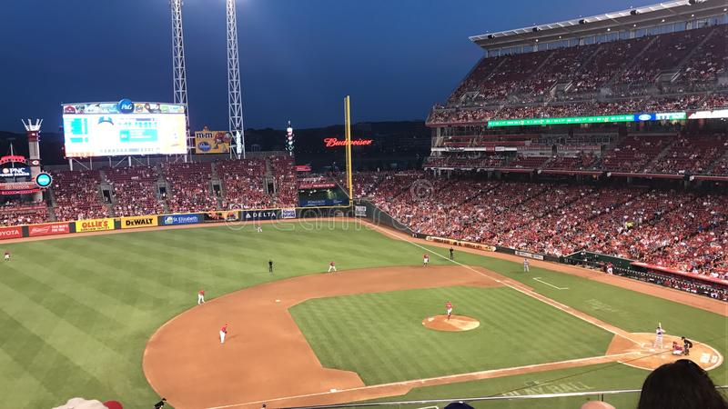 Cincinnati Reds photos stock