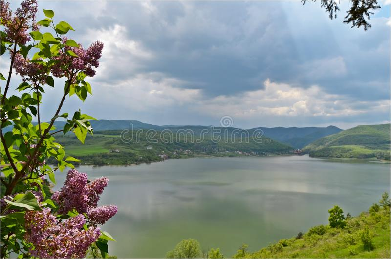 Cincis Lake stock photography