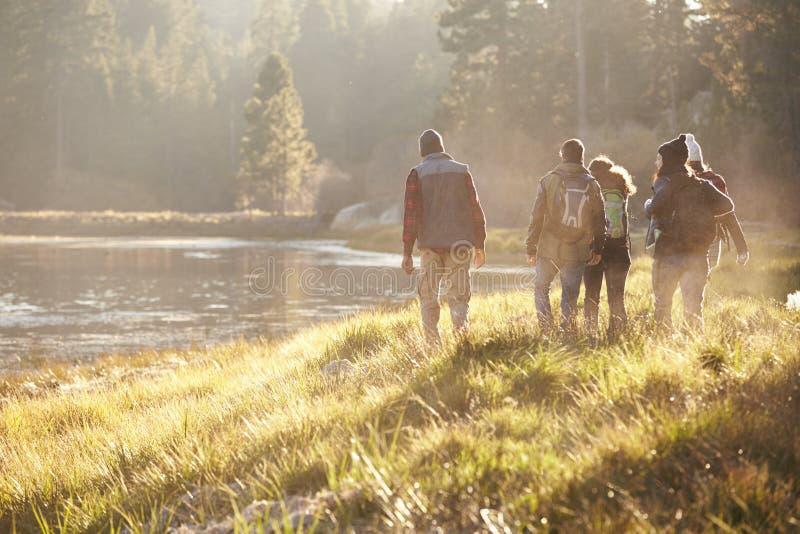 Cinco amigos en una acampada que caminan cerca del lago, visión trasera fotografía de archivo libre de regalías