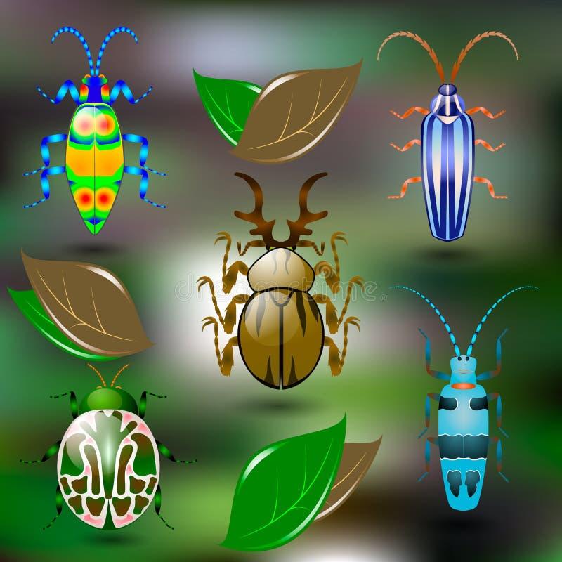 Cinco besouros coloridos brilhantes ilustração do vetor