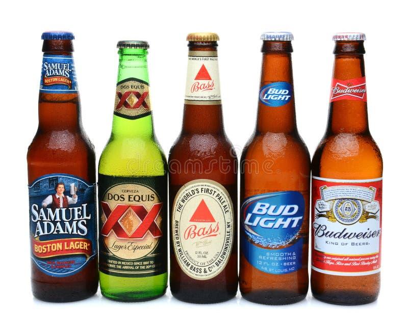 Cinco clasificaron las cervezas frías fotografía de archivo