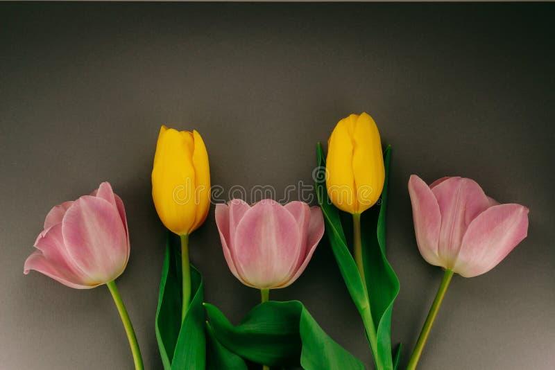 Cinco cor-de-rosa e tulipas amarelas fotos de stock royalty free