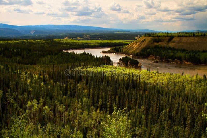 Cinco corredeiras do dedo, Yukon, Canadá fotos de stock