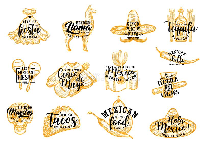 Cinco de Mayo Mexican sombrero, cactus and tequila. Cinco de Mayo Mexican holiday fiesta party vector icons with lettering. Chili pepper, tequila margarita and royalty free illustration