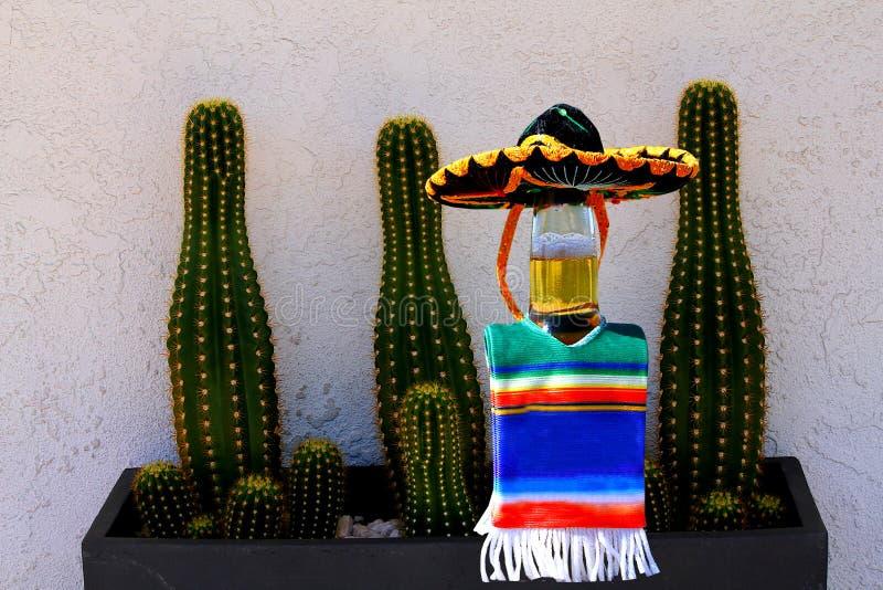 Cinco de Mayo piwna butelka i kaktus zdjęcie stock