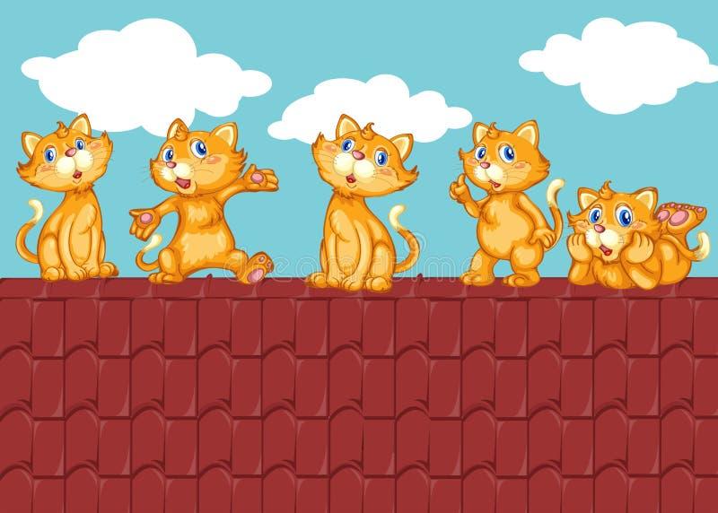Cinco gatitos en el tejado rojo ilustración del vector