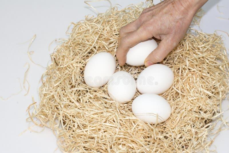 Cinco huevos en la jerarquía fotos de archivo