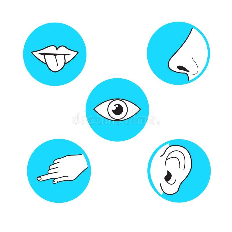Cinco métodos de los sentidos de opinión, soun del olor del tacto de la vista del gusto stock de ilustración