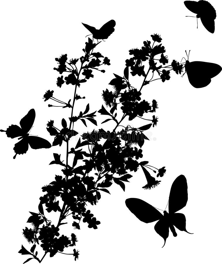 Cinco mariposas y cerezo libre illustration