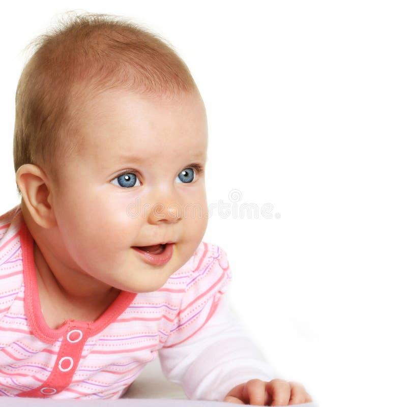 Cinco meses felizes do retrato velho do bebê foto de stock royalty free