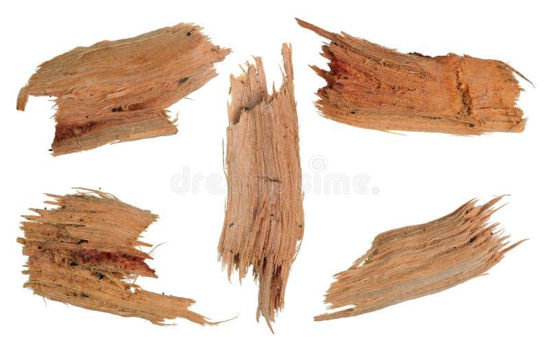 Cinco partes pequenas de madeira amarela quebrada podre do bordo Isolado foto de stock royalty free