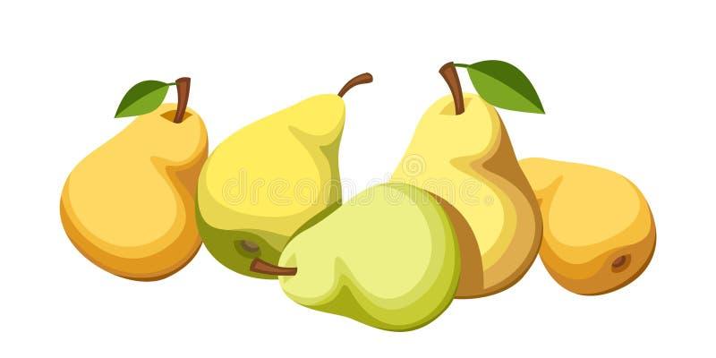 Cinco peras maduras. stock de ilustración