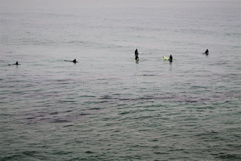 Cinco personas que practica surf que esperan una onda fotografía de archivo